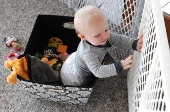 In the toy bin