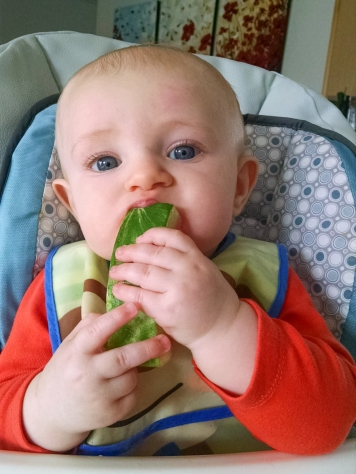 Watermelon rind... best natural teether