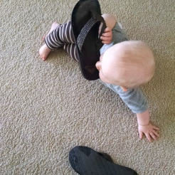 """His current favorite """"toy"""", my flip flops. :/"""