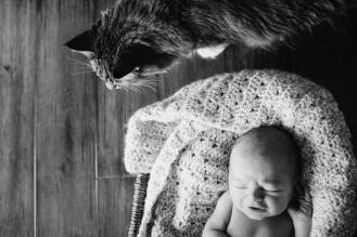 Gabriel's newborn photos