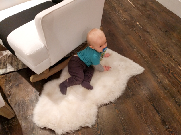 Chillin' on Pottery Barn's sheep skin rug