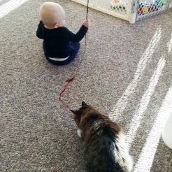 Learning to play with Kitty.