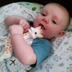 Someone likes his giraffe.