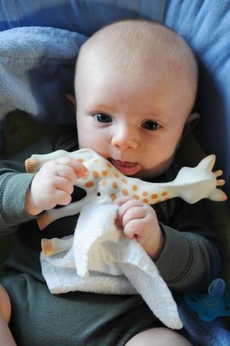 Mmm giraffe