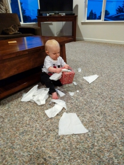 Tissue shredding