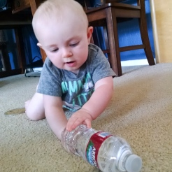 Water bottles are great fun... Till they roll away!