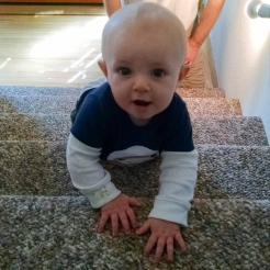 Well that happened fast. Climbed up the stairs!